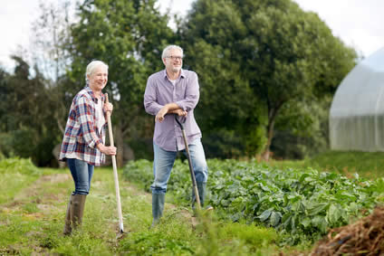 Protecting your wellbeing with health insurance ..... and a garden! Image